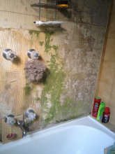 bathroom in Fitzroy, 2013
